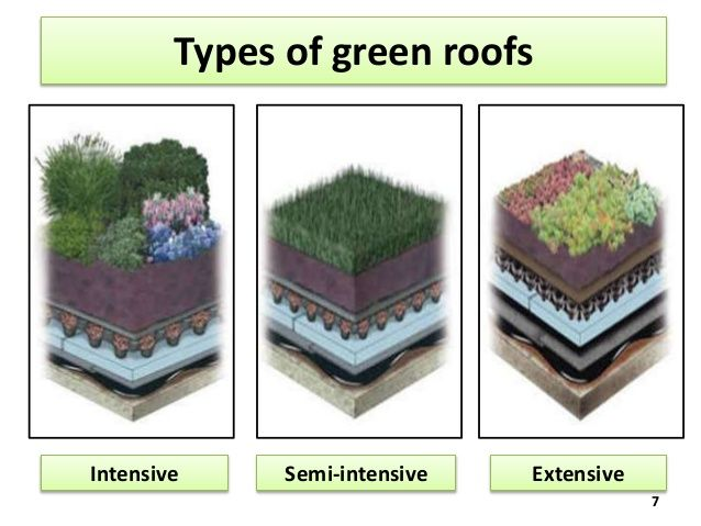 green roof container home